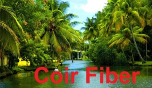Sairama Coir Industry – Coir fiber